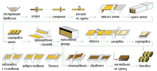Этапы производства фанеры