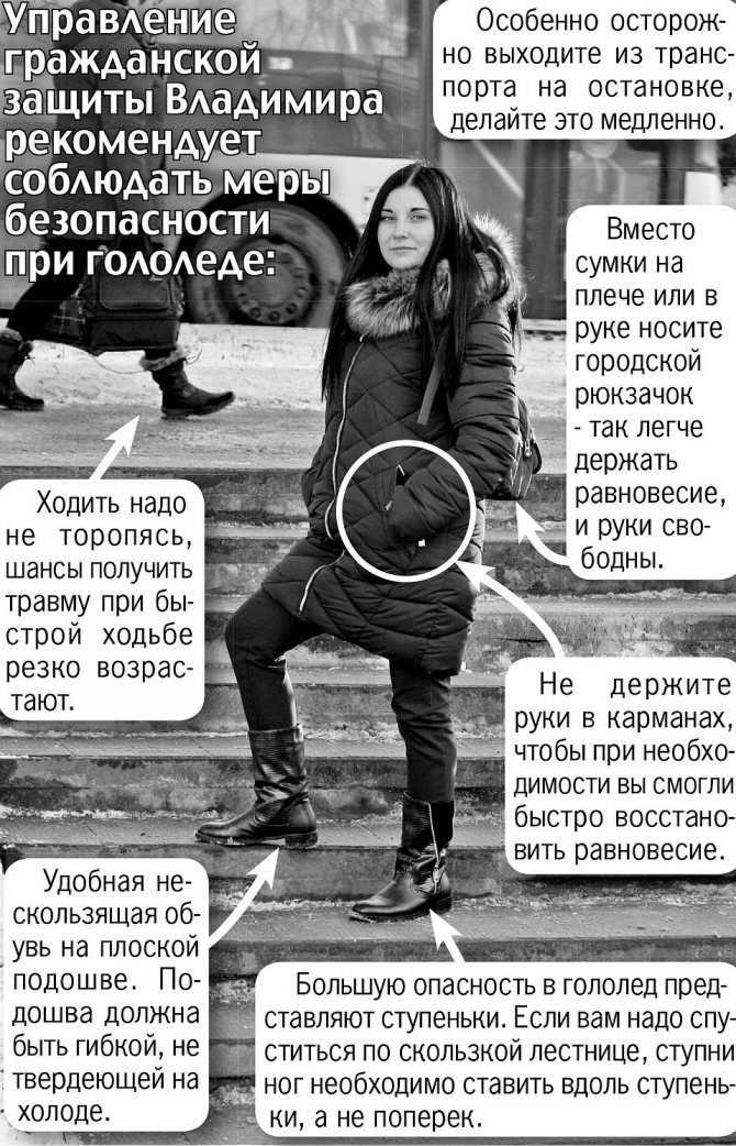 . Фото: Дмитрий НИКОЛАЕВ