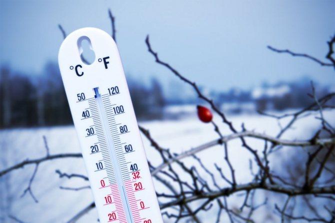 При какой температуре можно заливать фундамент