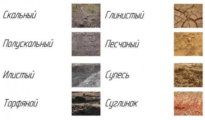 Виды грунта для заложения фундамента